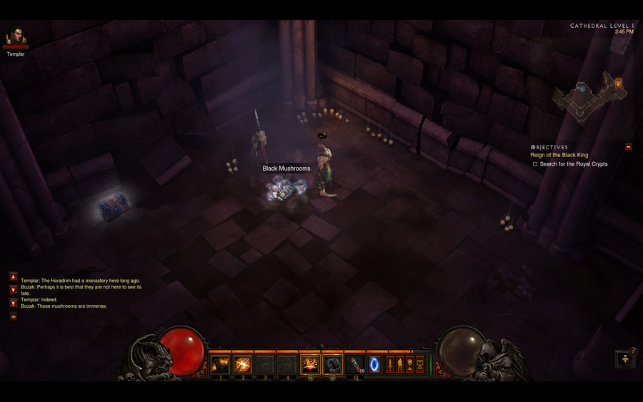 Black Mushrooms in Diablo 3